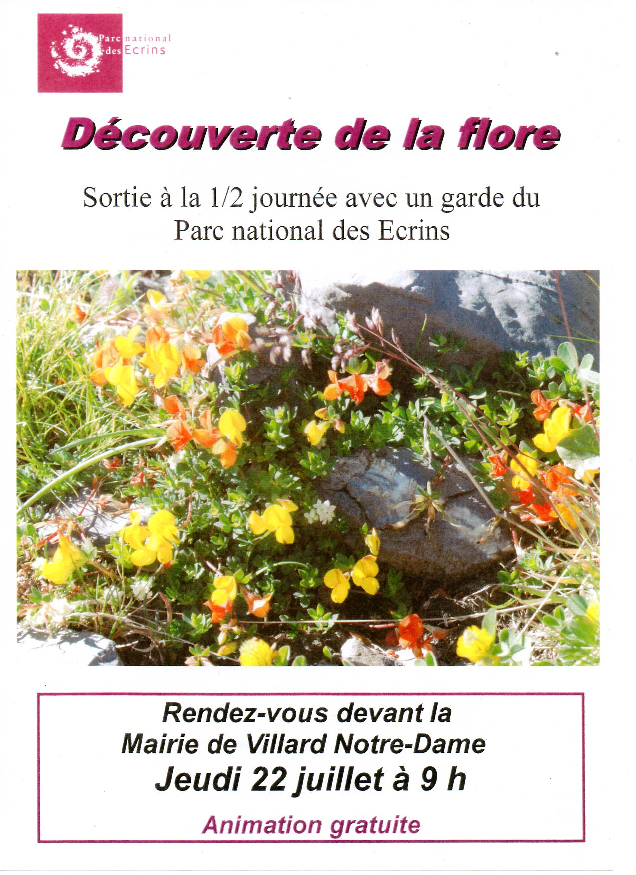 Sortie flore PNE295.jpg