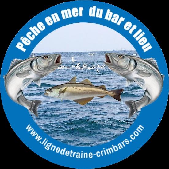 logo crimbars 2020 mer copie