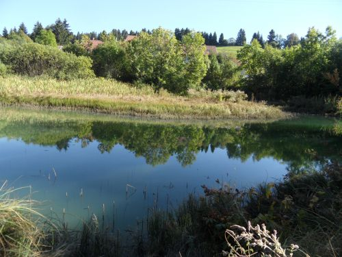 Petit lac de Longchaumois