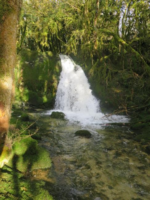 Une autre partie de la cascade