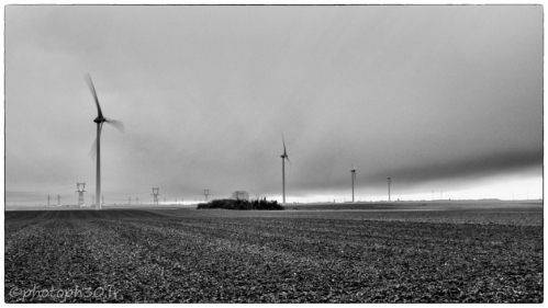 Photo de Christophe Pellé (Dans le vent 2013).jpg
