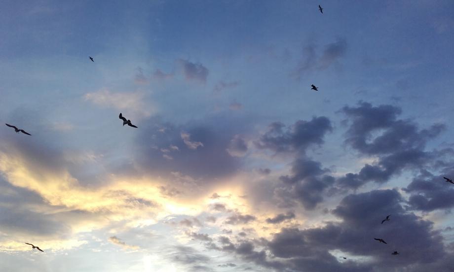 Ciel de Barcelone.jpg