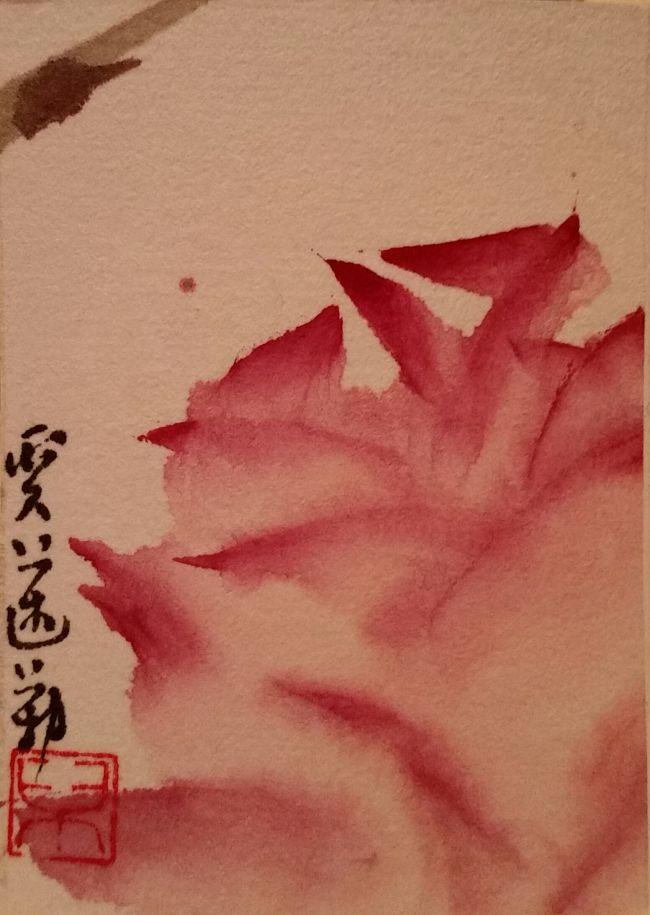 Epine et rose - Carte d'Artiste