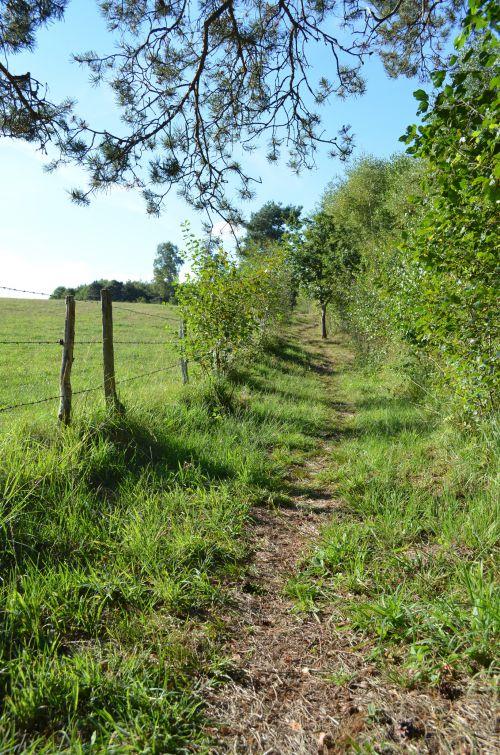 Le Marais du Cassan - Vers St Paul des Landes et Lacapelle Viescamp - Cantal