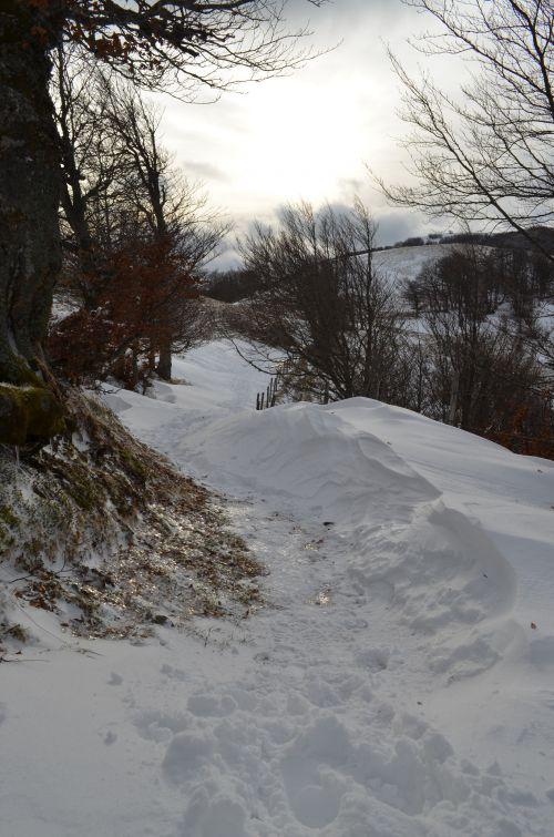 Du Col de Légal au Buron de Cabrespine