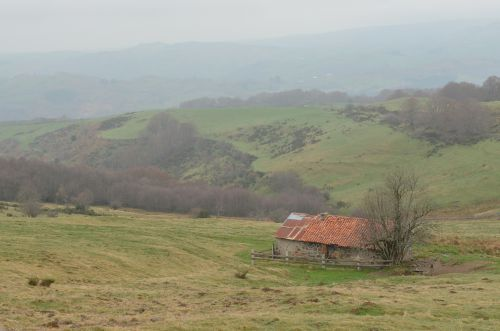 Vers Lascelle  - Cantal
