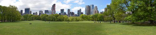 Grande pelouse de Central Parc NYC