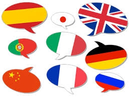 drapeau langue2.jpg