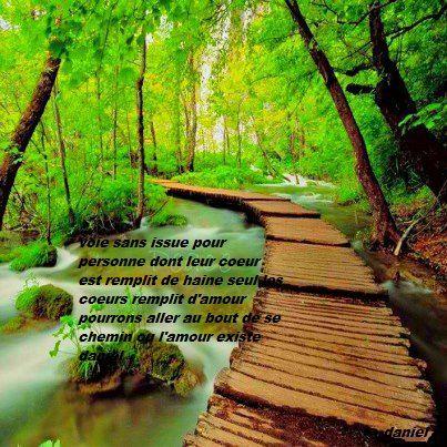 chemin de l(amour