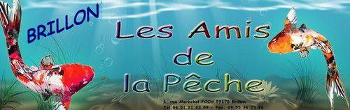artfichier_493635_601465_201203043718630.jpg