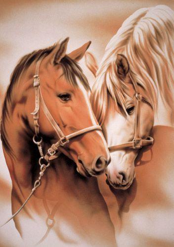Lecture Gratuit En Ligne Poeme Amours Equines Cheval Et Chevaux Le Blog Des Fans De Poneys Et De Chevaux