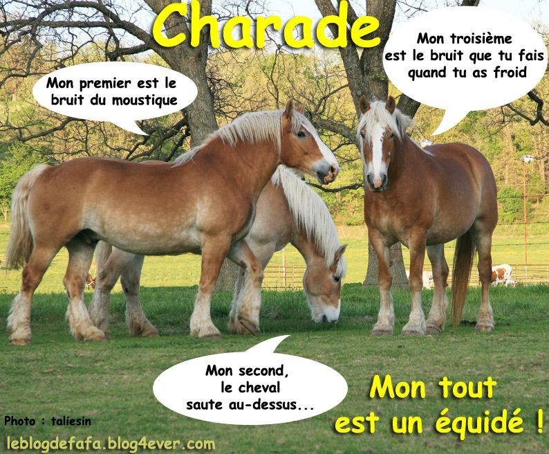 Charade cheval gratuite mon premier est le bruit du - Jeux de poney qui saute ...