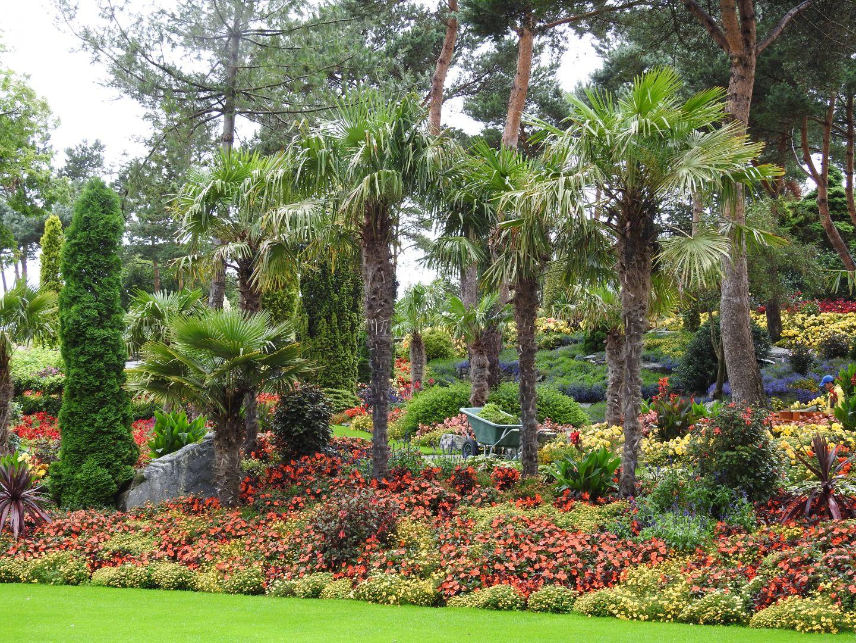 jardins exotique flor et fj re en norvege conseils pour cr er un jardin exotique sous nos climats. Black Bedroom Furniture Sets. Home Design Ideas