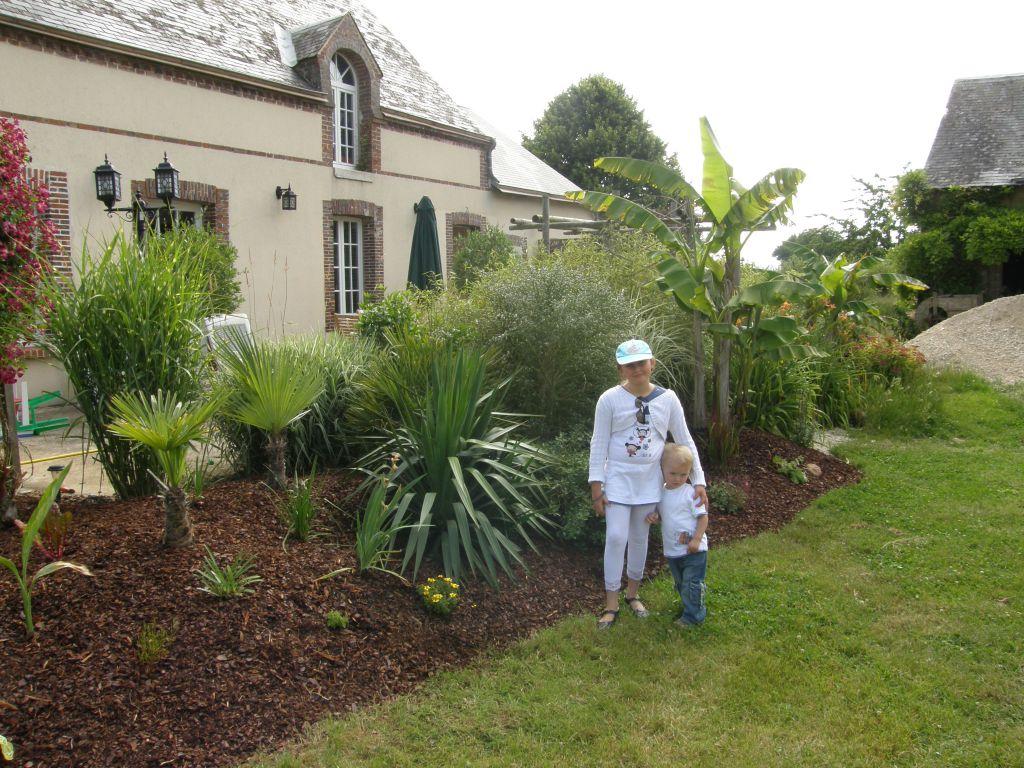 Rocaille 1 conseils pour cr er un jardin exotique sous nos climats - Ou planter un palmier dans son jardin ...