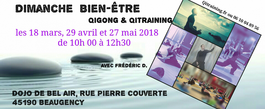 stage qigong et qitraining 2018.jpg