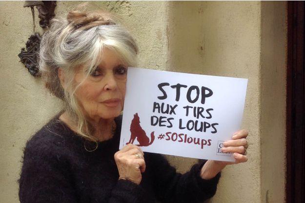 Abattage-des-loups-Brigitte-Bardot-ecrit-a-Nicolas-Hulot.jpg