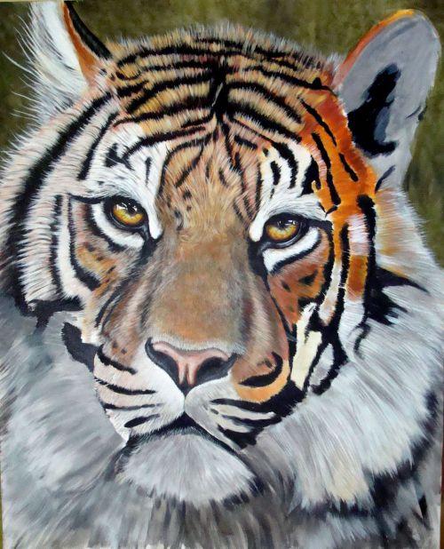 suite du tigre