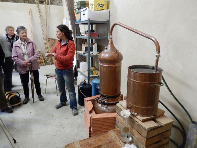 Quelques précisions sur la distillation par Audrey BENAVENT