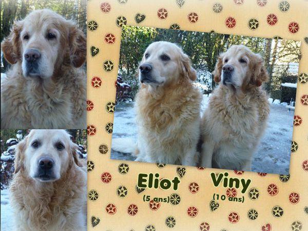 Eliot et Viny