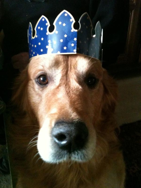 Dagobert, le bon roi