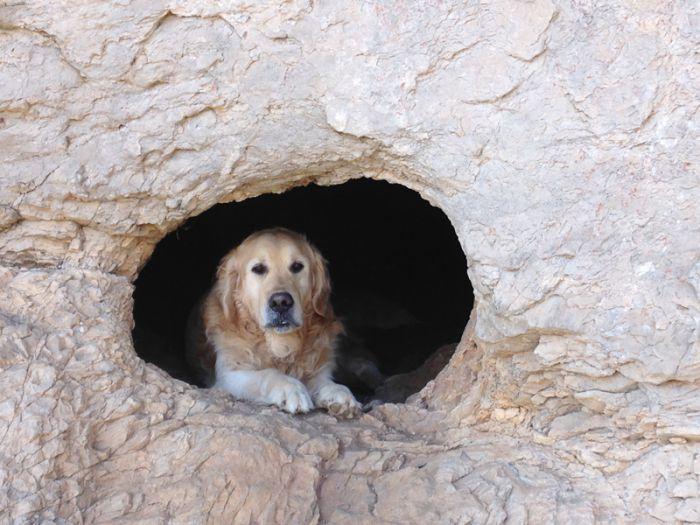 Eezo dans la grotte