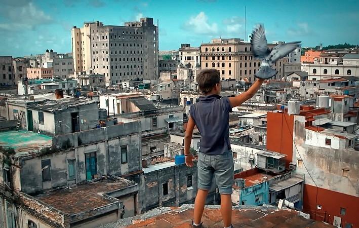 temoignage-touchant-Cuba-remarquable-justesse_0_730_450.jpg