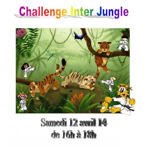 challenge inter jungle.jpg