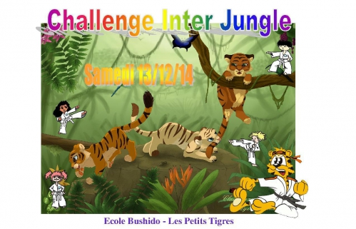 challenge inter jungle dec 14.jpg