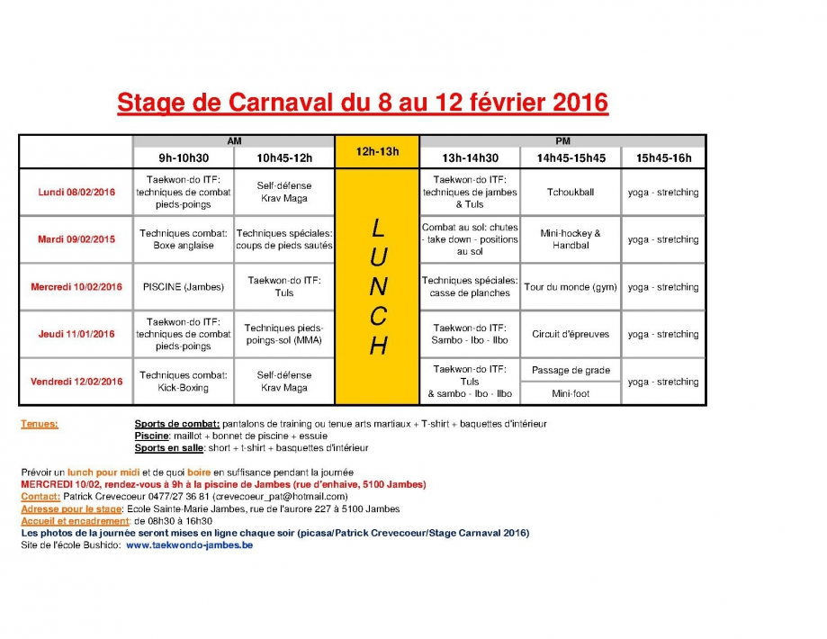 programme stage carnaval 2016.jpg