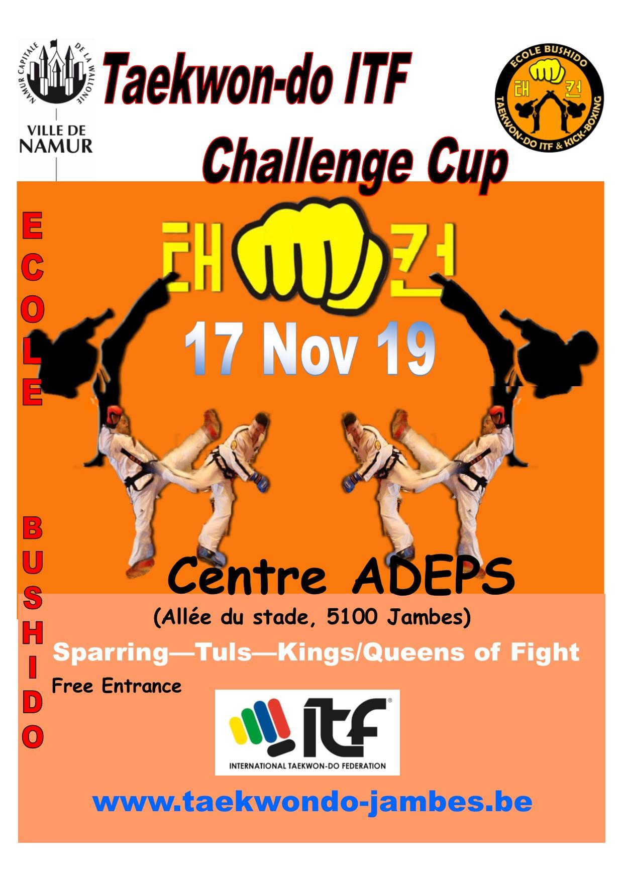 affiche challenge cup 17 Nov 19.jpg