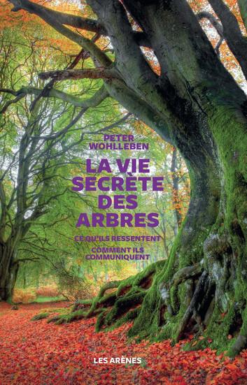 la-vie-secrete-des-arbres-4.jpg