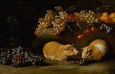 bartolomeo-bimbi-1748-v-1729-raisin.jpg