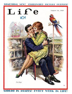 life-magazine-home-300x392.jpg