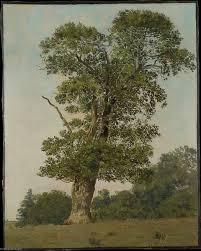 arbre dans l'Art.jpg