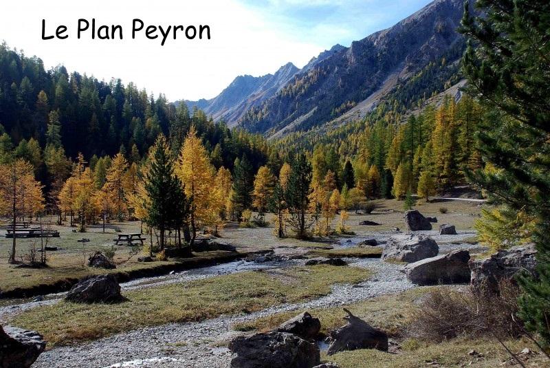 3 Le Plan Peyron.jpg