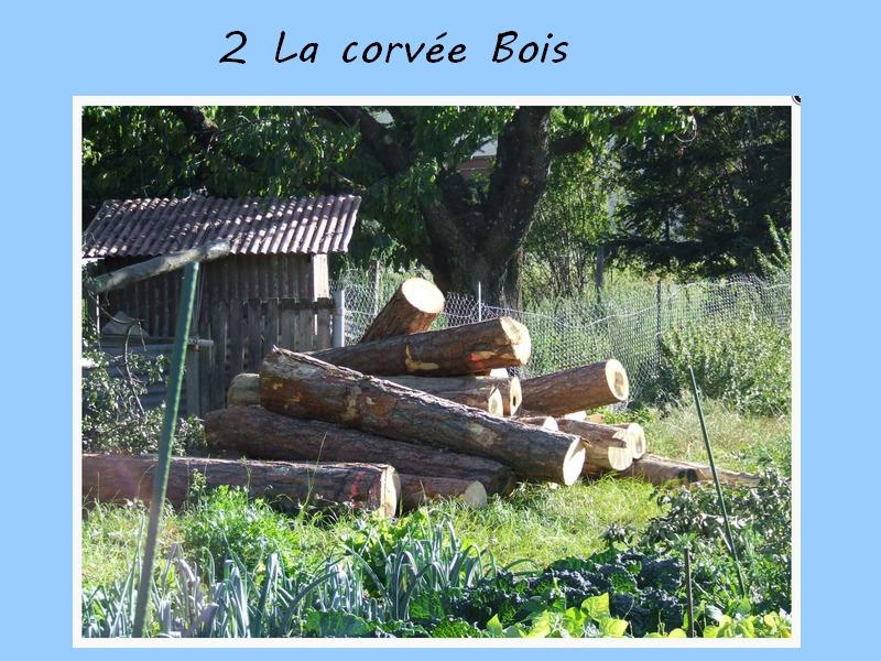 2-Corve-Bois-ConvertImage.jpg