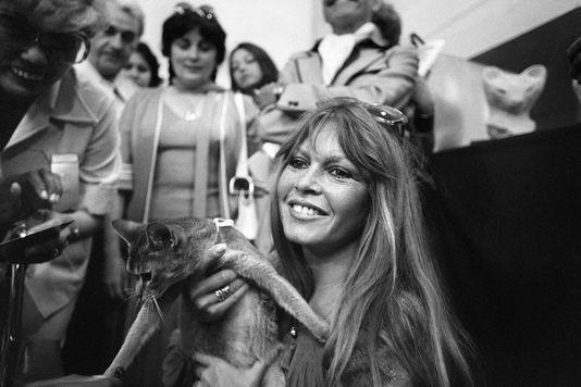 Brigitte Bardot à Saint-Tropez en juin 1977.jpg
