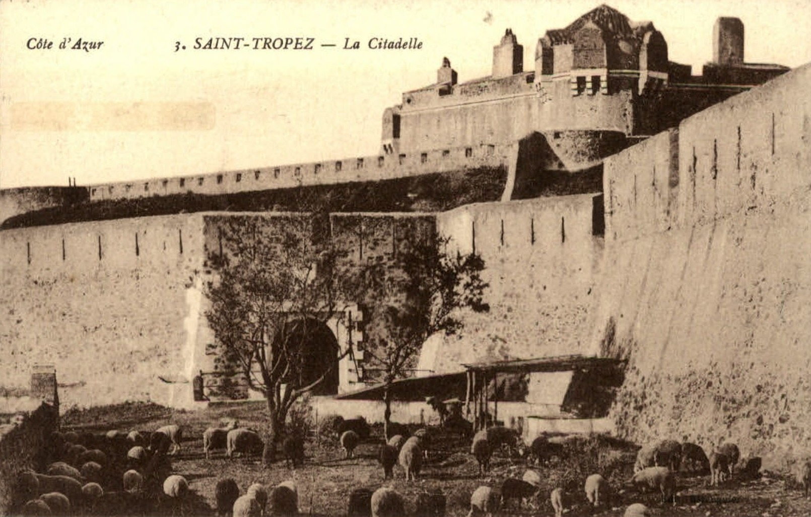 citadelle-ok-Copie.jpg