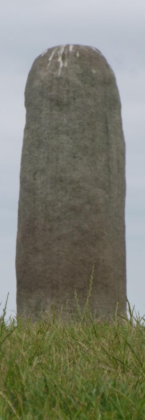 Irlande Knoth et newgrange juillet 2013 038pm.jpg