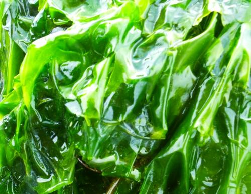 salade et algues  mars 2014 062pm.jpg