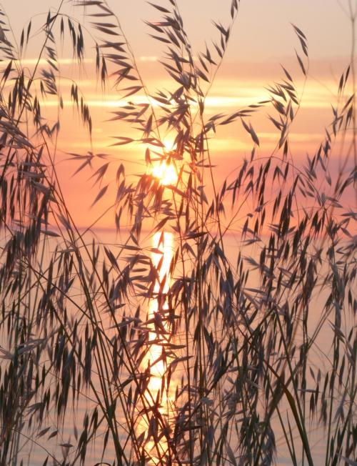coucher de soleil juillet 2014 085pm.jpg