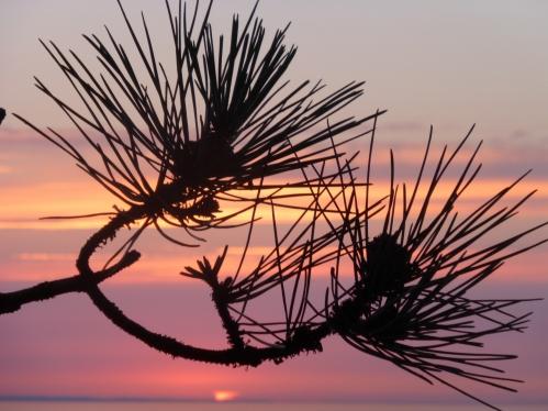 coucher de soleil juillet 2014 156pm.jpg
