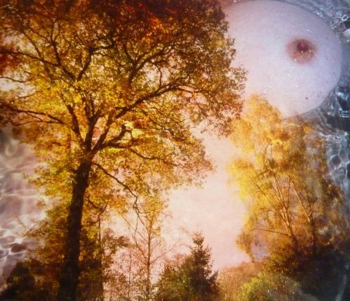 archives photosVerbatim bran du 4368pm.jpg