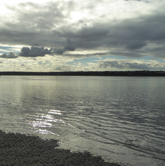 Baie d'Hillion 21 11 2015 175pm.jpg