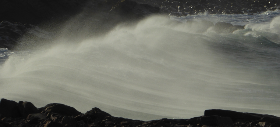 Dahouet PLURIEN Jan 2°16 019pm.jpg