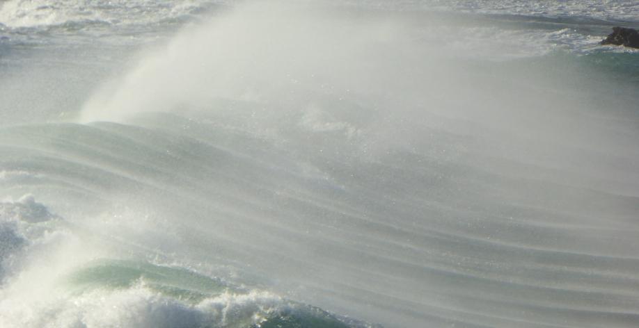 Dahouet PLURIEN Jan 2°16 023pm.jpg