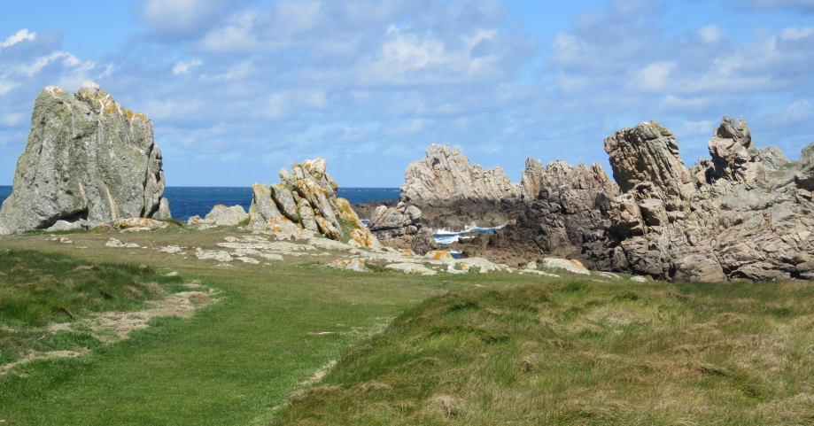 Ouessant Avril 2016 468pm.jpg