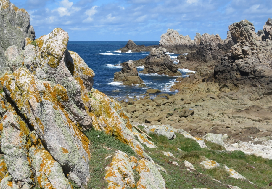 Ouessant Avril 2016 472pm.jpg