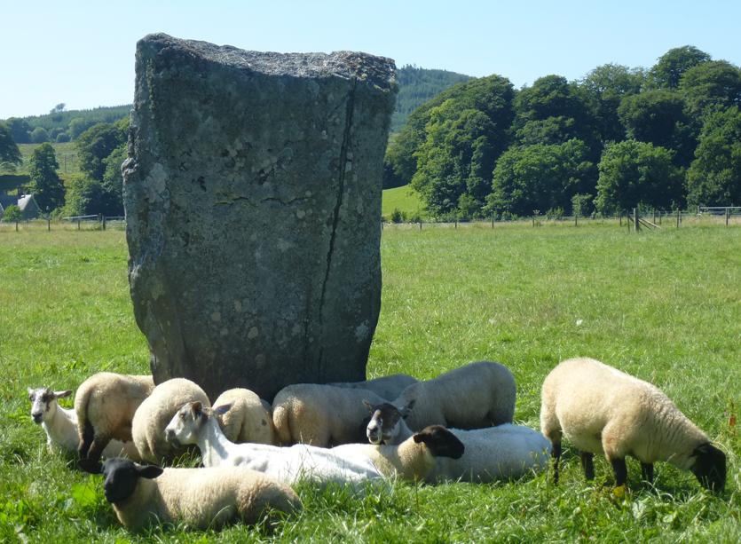 Irlande Juin Juillet 2013 925pm.jpg