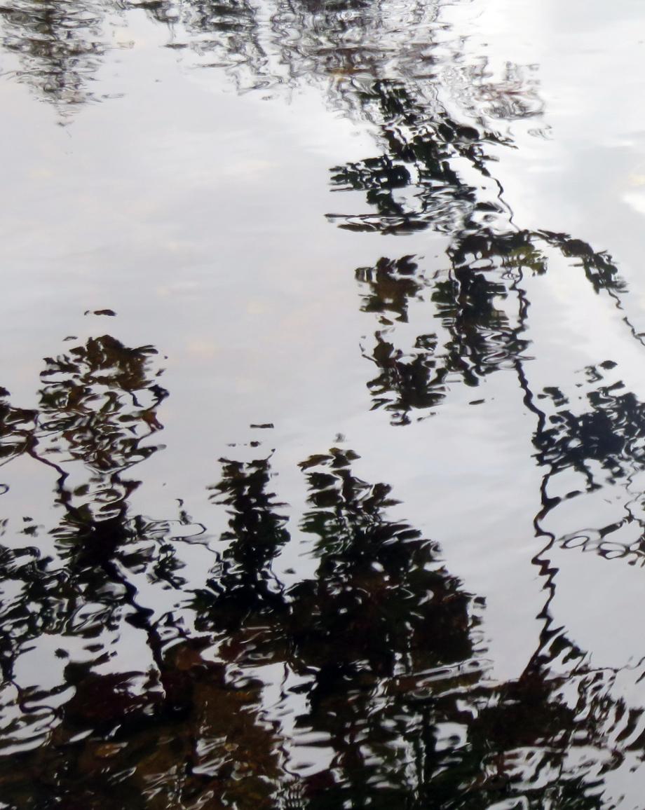 Chaos du Gouet OCT 2018 353pm.jpg